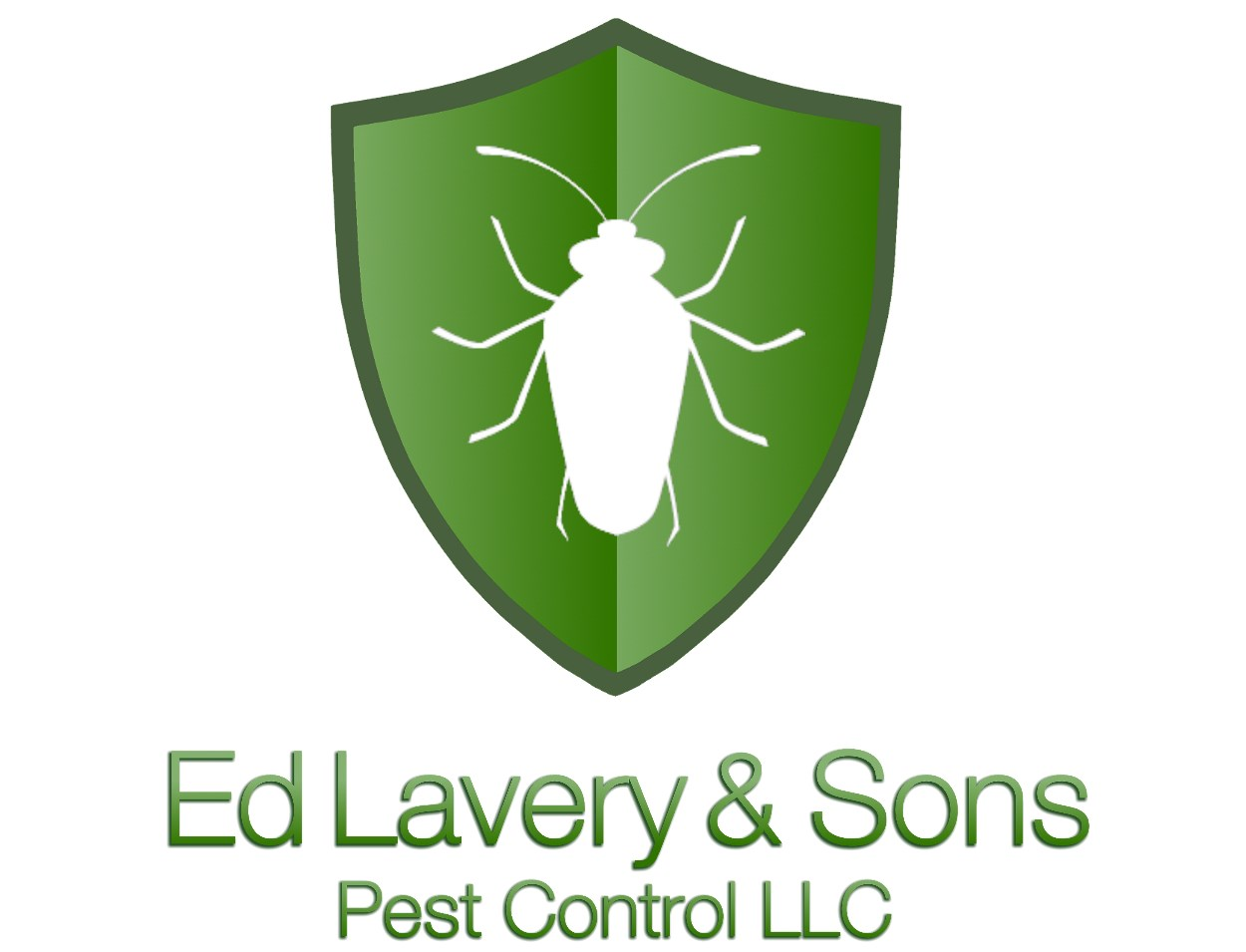 CT Pest Control & Exterminator | Pest Removal of Bugs, Insects & Wildlife