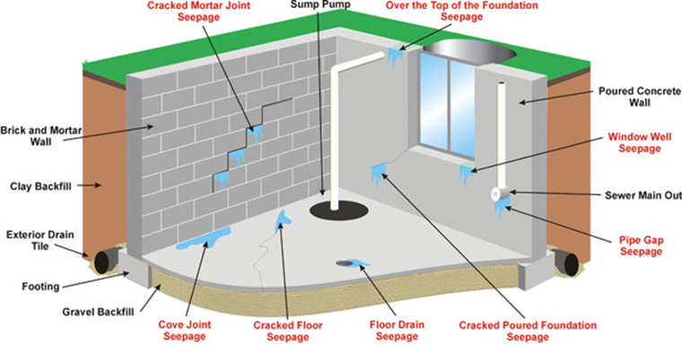 leaking roofs and basements are also sources for insect infestation